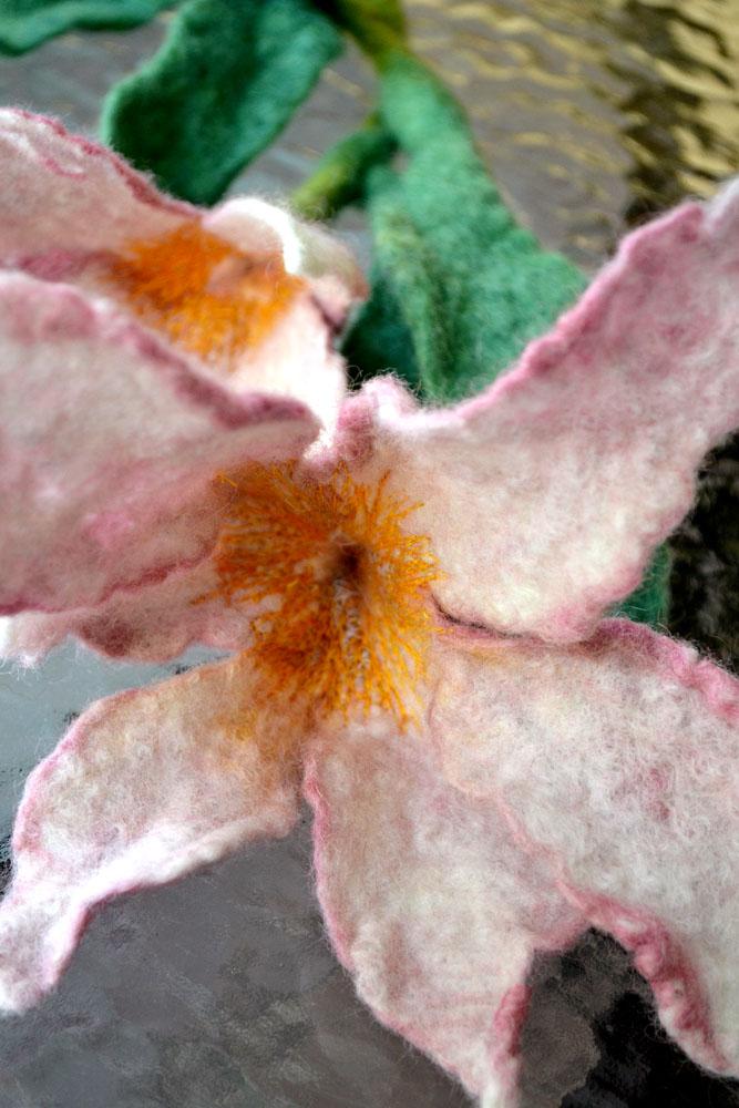 Fairy-1-flower