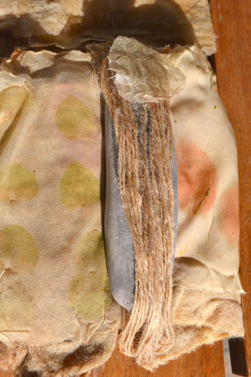 L-ecalyptus-results-mine
